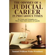 The Odyssey of a Judicial Career
